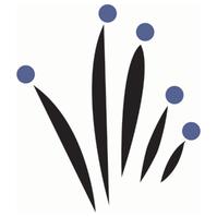 logo-onlus-cabss